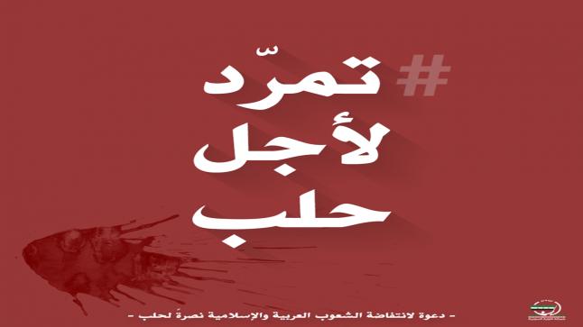 نشطاء يدشنون دعوة : تمرد لأجل حلب