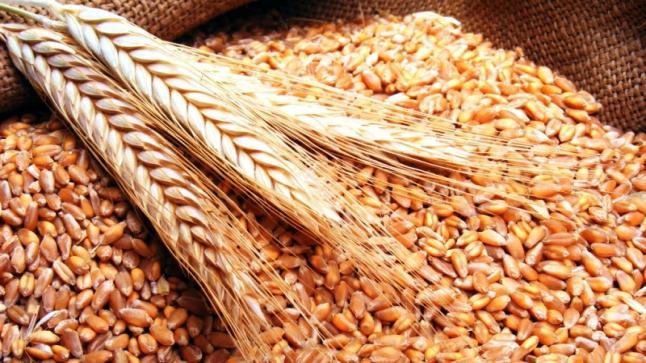 الرئيس اللبنانى يؤكد على ضرورة ضبط تفلت أسعار السلع وحماية الأمن الغذائى